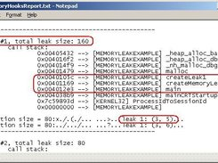 Sample output for detected memory leak