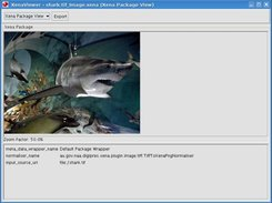 Normalised image file shown in the Xena viewer