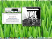 jadeo on OSX