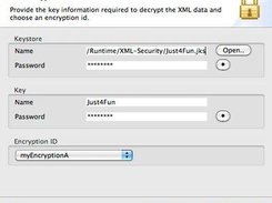 XML Decryption Wizard