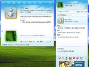 This shows how your friends on MSN see you.
