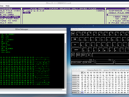OZvm running in double screen and using debugging tools